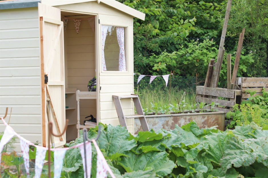 allotment shed, bunting